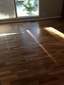 floor-333165_640